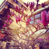 3/21/2014 tarihinde Ayse A.ziyaretçi tarafından Caffé Nero'de çekilen fotoğraf