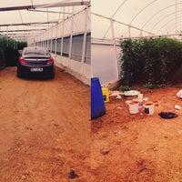 Photo taken at uysallar tarım kayaburnu modern sera tesisleri-2 by Murat U. on 11/13/2014