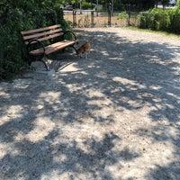 7/12/2018에 Gale Y.님이 Owls Head Dog Park에서 찍은 사진