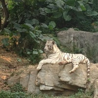 Photo taken at Xiang Jiang Safari Park, Guangzhou by Jen S. on 10/3/2012