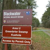 Photo taken at Blackwater National Wildlife Refuge by Matt on 3/19/2016