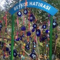 10/22/2017 tarihinde Esra S.ziyaretçi tarafından Polonezköy Cam Sanat Merkezi'de çekilen fotoğraf