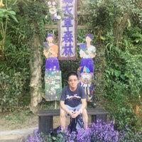 Photo taken at 薰衣草森林 Lavender Cottage by Edwin C. on 11/7/2017