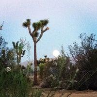 Photo taken at Best Western Joshua Tree Hotel & Suites by YA Y. on 8/11/2014