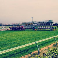 Photo taken at Nakayama Racecourse by masakitter on 3/24/2013