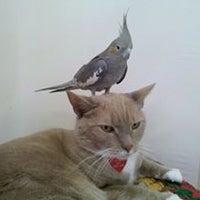 Photo taken at Marlborough Bird & Animal by Marlborough Bird & Animal on 9/16/2013