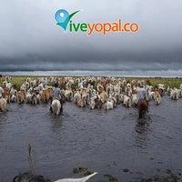 Photo taken at Yopal by Yopal on 9/18/2013