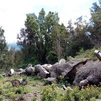 Foto tirada no(a) Parque Nacional Los Alerces por accesocronico em 12/14/2017