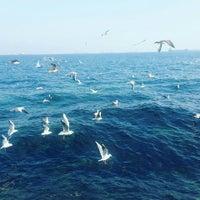 Photo taken at YSK BEACH CLUB by Gökçen Ö. on 11/11/2015