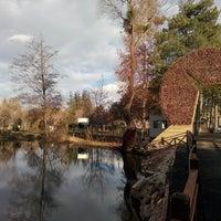 1/25/2014 tarihinde Güray Y.ziyaretçi tarafından Odunpazarı Botanik Parkı'de çekilen fotoğraf