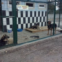 Photo taken at kastamonu hayvan barınağı by Ozlm D. on 5/14/2014