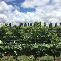 Das Foto wurde bei Dominio del Plata Winery von Caro G. am 12/3/2017 aufgenommen