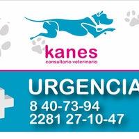 Photo taken at Kanes consultorio Veterinario by Oscar T. on 8/27/2014