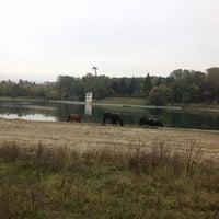Photo taken at старое озеро by Андрей М. on 10/3/2013