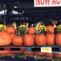 Photo taken at Plant City Farmers Market by Austin C. on 10/5/2013