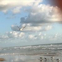 "Photo taken at ""Playa miramar"" by Mirna Edith G. on 3/20/2017"