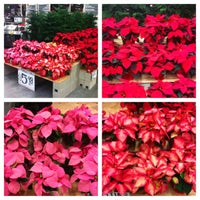 Photo taken at The Home Depot by Stephen G. on 11/21/2013