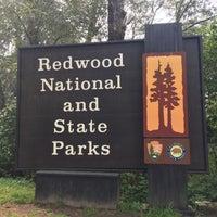 Photo taken at Del Norte Coast Redwood State Park by Matthew L. on 9/8/2017