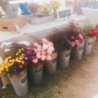 Photo taken at Roadrunner Park Farmers Market by Dami Y. on 4/9/2016