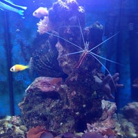 Photo taken at Aqua Life by Виталий Д. on 1/5/2014