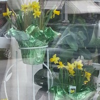 Photo taken at The Modest Florist by Libby Francis Baxter T. on 3/20/2016