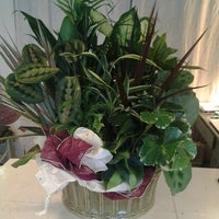 Photo taken at The Modest Florist by Libby Francis Baxter T. on 1/21/2014