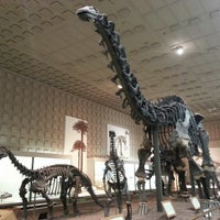 Photo taken at Peabody Museum of Natural History by senay on 3/18/2014