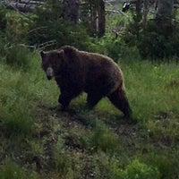 Photo taken at Yellowstone National Park - East Entrance by Pat F. on 6/30/2017
