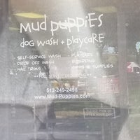 Photo taken at Mud Puppies Dog Wash & Playcare by Cyn on 7/10/2017