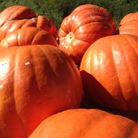 Photo taken at Pearce's Farm Stand by Rob H. on 10/13/2013
