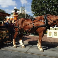 Photo taken at Horse-Drawn Streetcars by Jenny on 10/13/2013