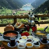 Photo taken at Kestel Ormanı by Firat Ö. on 5/27/2016