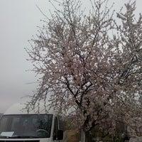 Photo taken at Durmaz Çiftliği by Recep D. on 3/15/2014