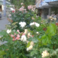 Photo taken at ayyildiz mahallesi pazar yeri by ♣ASEL♠ on 7/6/2014
