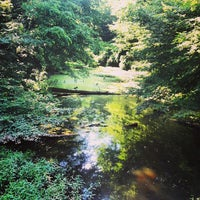 Photo taken at Wolf River Trails by Dave B. on 6/22/2013
