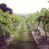 Photo taken at Vynecrest Vineyard & Winery by Discover Lehigh Valley on 7/11/2014