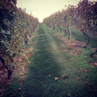 Photo taken at Vynecrest Vineyard & Winery by Discover Lehigh Valley on 10/18/2014