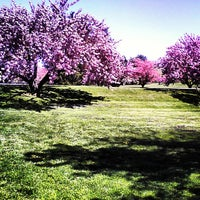 Photo taken at Rose Garden by Discover Lehigh Valley on 5/3/2013