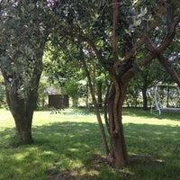 Photo taken at Marradi by Fabrizia B. on 4/25/2014
