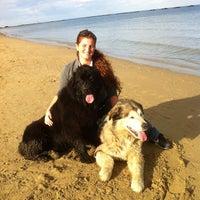 Foto scattata a Spiaggia Libera da Alice D. il 11/3/2013