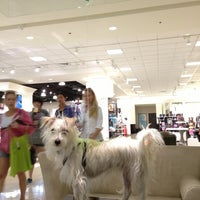Photo taken at Nordstrom Santa Monica by Troy H. on 7/21/2013