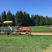 Photo taken at Krause Berry Farms & Estate Winery by Simo on 7/24/2016