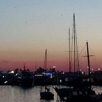 2/17/2014 tarihinde Hande Y.ziyaretçi tarafından MarinTurk İstanbul City Port'de çekilen fotoğraf