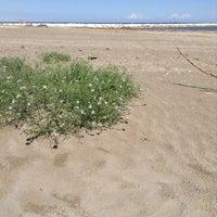 Photo taken at Spiaggia Degli Alberoni by André B. on 5/24/2014