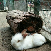 Photo taken at Rabbit Park by sykez on 11/20/2016