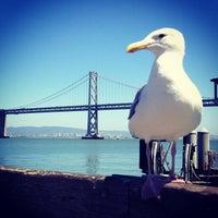 Photo taken at Gate E - Alameda/Oakland/Harbor Bay Ferry Dock by María de los Ángeles L. on 8/1/2013