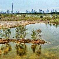 Photo taken at Ras Al Khor Wildlife Sanctuary محمية راس الخور by Hisham B. on 4/27/2013
