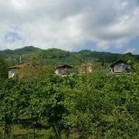 Photo taken at Eskiordu Köyü Madendüzü by .. on 4/16/2016