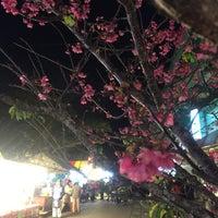Photo taken at 名護城公園 by ny7ny T. on 1/31/2015