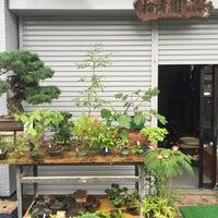 Photo taken at 松濤園 by ny7ny T. on 6/22/2016